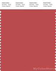 PANTONE SMART 17-1545X Color Swatch Card, Cranberry