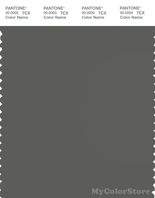Pantone Smart 18 0306 Tcx Color Swatch Card Pantone Gunmetal