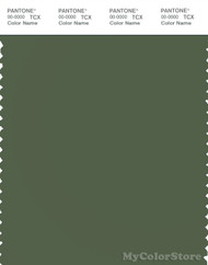 PANTONE SMART 18-0317X Color Swatch Card, Bronze Green
