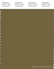 PANTONE SMART 18-0629X Color Swatch Card, Lizard
