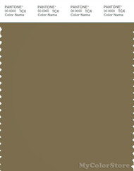 PANTONE SMART 18-0724X Color Swatch Card, Gothic Olive