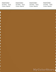 PANTONE SMART 18-0950X Color Swatch Card, Cathay Spice