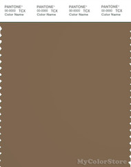 PANTONE SMART 18-1018X Color Swatch Card, Otter