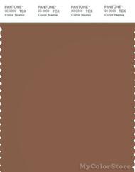 PANTONE SMART 18-1137X Color Swatch Card, Rawhide