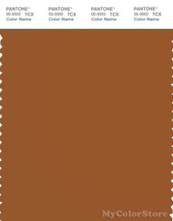 PANTONE SMART 18-1142X Color Swatch Card, Leather Brown
