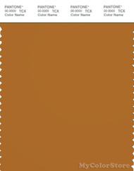PANTONE SMART 18-1160X Color Swatch Card, Sudan Brown