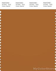 PANTONE SMART 18-1163X Color Swatch Card, Pumpkin Spice