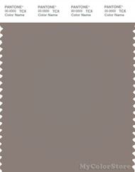 PANTONE SMART 18-1210X Color Swatch Card, Driftwood