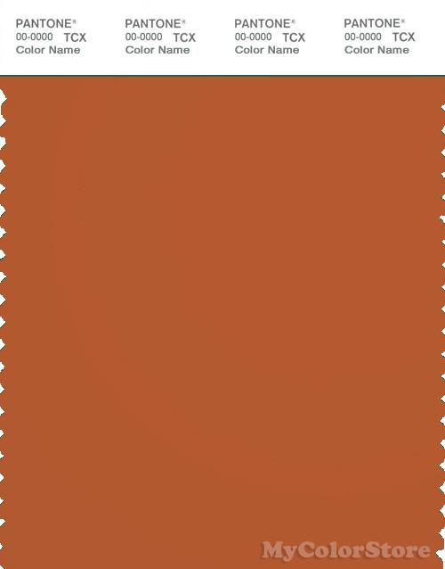 PANTONE SMART 18 1248X Color Swatch Card Rust