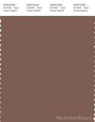 PANTONE SMART 18-1314X Color Swatch Card, Acorn
