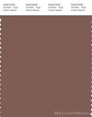 PANTONE SMART 18-1326X Color Swatch Card, Nutmeg