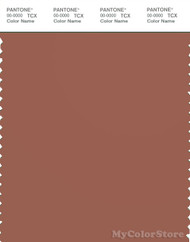PANTONE SMART 18-1336X Color Swatch Card, Copper Brown