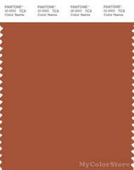 PANTONE SMART 18-1345X Color Swatch Card, Cinnamon Stick