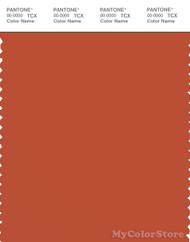 PANTONE SMART 18-1354X Color Swatch Card, Burnt Ochre