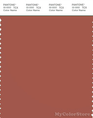 PANTONE SMART 18-1434X Color Swatch Card, Etruscan Red
