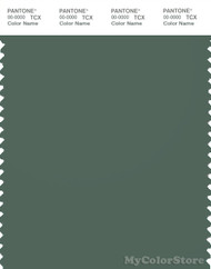 PANTONE SMART 18-6011X Color Swatch Card, Duck Green