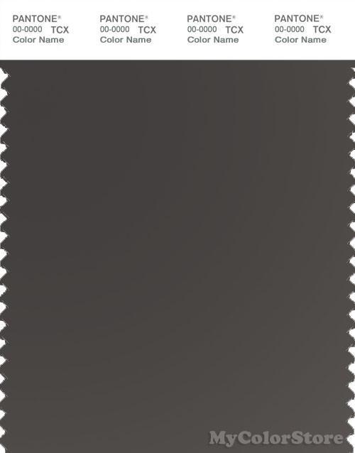 PANTONE SMART 19-0000X Color Swatch Card, Raven