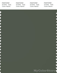 PANTONE SMART 19-0309X Color Swatch Card, Thyme