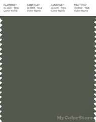 PANTONE SMART 19-0312X Color Swatch Card, Beetle