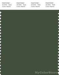 PANTONE SMART 19-0315X Color Swatch Card, Black Forest