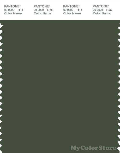 PANTONE SMART 19-0315X Color Swatch Card, Black Forest