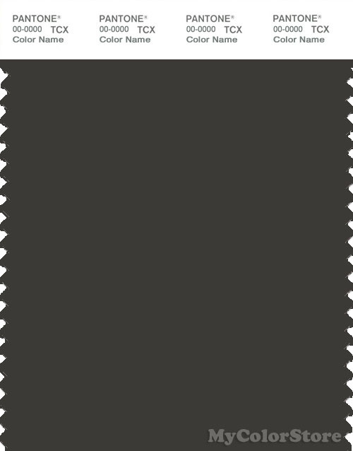 PANTONE SMART 19-0508X Color Swatch Card, Peat