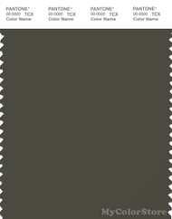 PANTONE SMART 19-0916X Color Swatch Card, Rain Drum