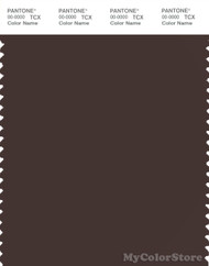 PANTONE SMART 19-1016X Color Swatch Card, Java