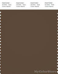 PANTONE SMART 19-1020X Color Swatch Card, Dark Earth