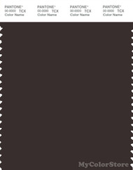 PANTONE SMART 19-1109X Color Swatch Card, Chocolate Torte