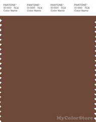 PANTONE SMART 19-1230X Color Swatch Card, Friar Brown
