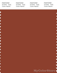 PANTONE SMART 19-1250X Color Swatch Card, Picante