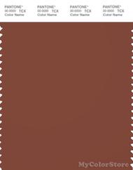 PANTONE SMART 19-1333X Color Swatch Card, Sequoia