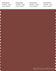 PANTONE SMART 19-1334X Color Swatch Card, Henna
