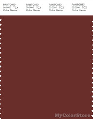 PANTONE SMART 19-1337X Color Swatch Card, Fired Brick