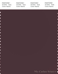 PANTONE SMART 19-1619X Color Swatch Card, Fudge