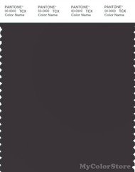PANTONE SMART 19-3909X Color Swatch Card, Black Bean