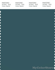 PANTONE SMART 19-4820X Color Swatch Card, Balsam
