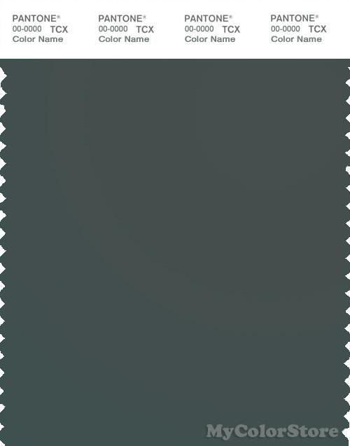 Pantone Smart 19 5004 Tcx Color Swatch Card Pantone Urban Chic