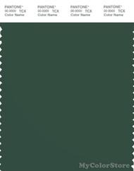 PANTONE SMART 19-5920X Color Swatch Card, Pineneedle