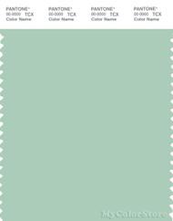PANTONE SMART 13-5911X Color Swatch Card, Bird's Egg Green