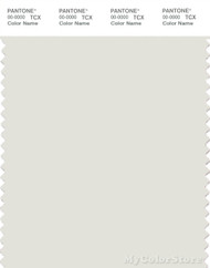 PANTONE SMART 11-4301X Color Swatch Card, Lily White