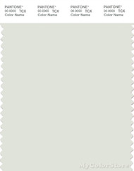 PANTONE SMART 11-4803X Color Swatch Card, Ice