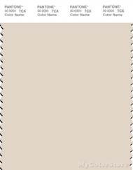 PANTONE SMART 12-0304X Color Swatch Card, Whitecap Gray