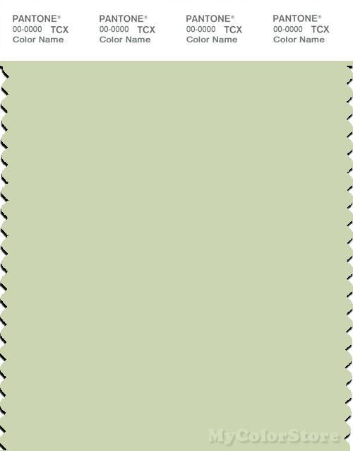 PANTONE SMART 12-0313X Color Swatch Card, Seafoam Green