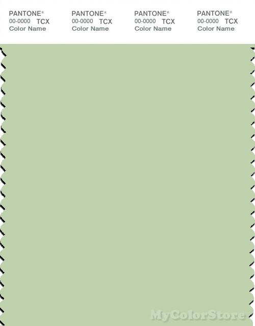 PANTONE SMART 12-0317X Color Swatch Card, Gleam