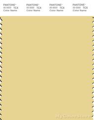 PANTONE SMART 12-0718X Color Swatch Card, Pineapple Slice