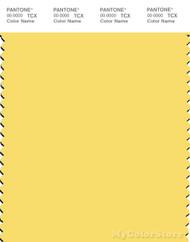 PANTONE SMART 12-0737X Color Swatch Card, Goldfinch