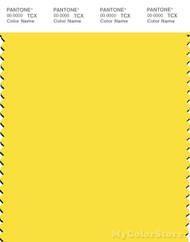 PANTONE SMART 12-0752X Color Swatch Card, Buttercup
