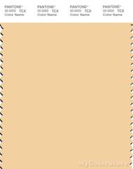 PANTONE SMART 12-0822X Color Swatch Card, Golden Fleece